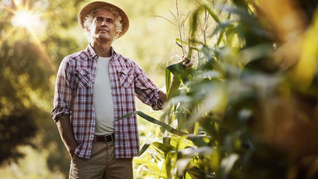 6-Habilidades-que-um-bom-agricultor-deve-desenvolver -