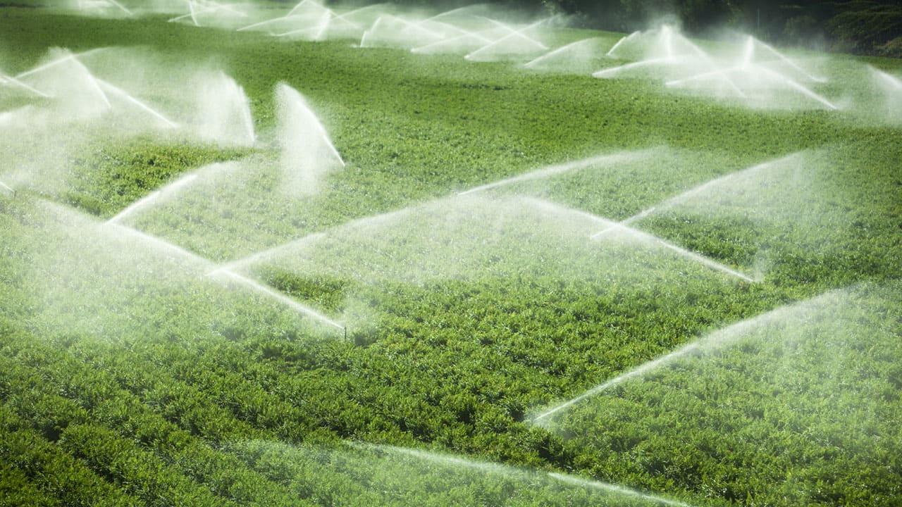 Conheça-as-estratégias-de-aplicação-de-fertilizantes-e-veja-qual-é-a-melhor-para-a-sua-lavoura-